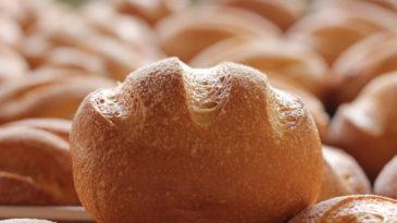 Pão de Chivito