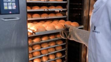 7 tipos de pão de hambúrguer que você precisa conhecer