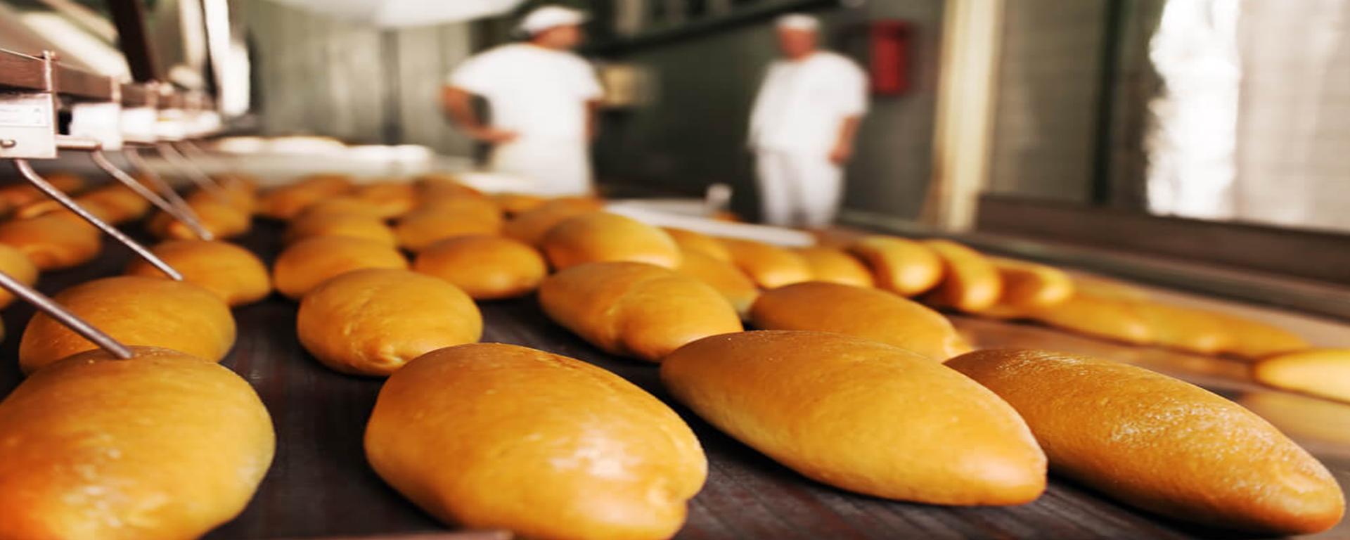 Tudo o que você precisa saber sobre padaria industrial