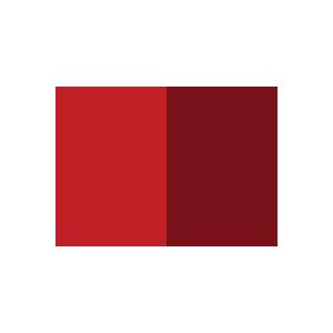 Massa Madre Blog