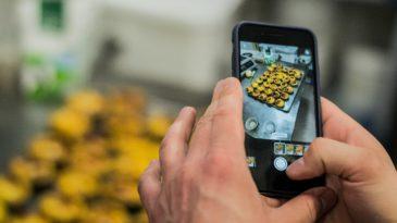 Deseja melhorar as publicações da sua padaria nas redes sociais? Não perca nossas dicas!